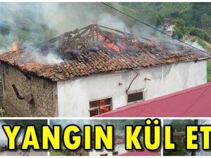 Yangın Kül Etti