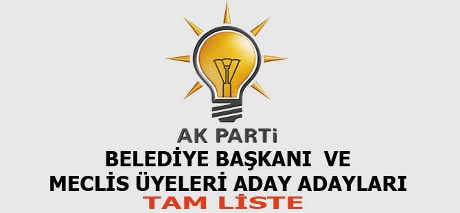 AK Parti Akçaabat Belediye başkanlığı ve Meclis üyeliği Aday Adayları listesi.