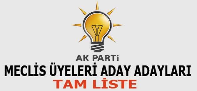 AK Parti'den belediye meclis üyeliği için müracaat edenlerin tam listesi.