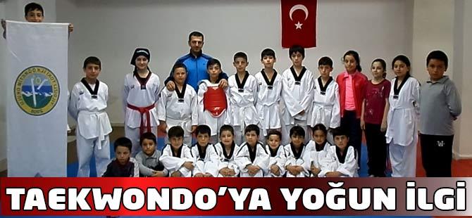 Taekwondo Kursuna yoğun ilgi