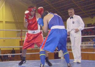 Turnuva Sona Erdi