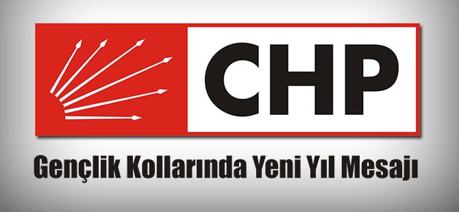 CHP Gençlik Kolları'ndan Yeni Yıl Mesajı