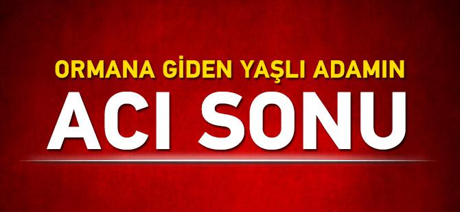Trabzon'da ağaç kesmek için evden çıkan adamın cesedi derede bulundu!