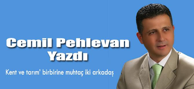 Cemil Pehlevan yazdı