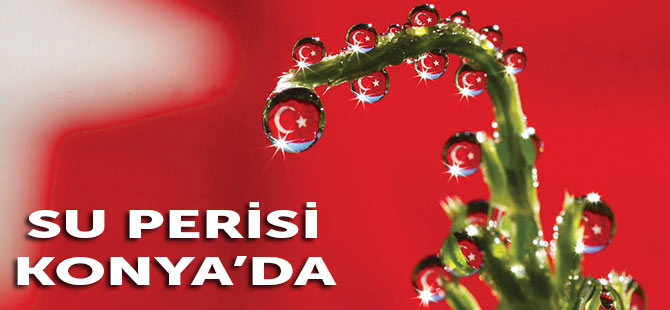 Su Perisi Konya'da