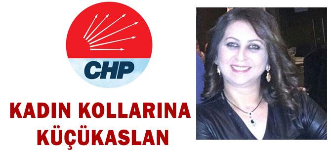 CHP Kadın Kollarına Küçükaslan