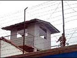 Kemençeci Palaya 6 yıl