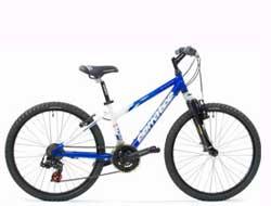 Bisiklet Çaldı, Cezaevini Boyladı