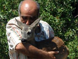Öyle Bir Hayvan Sevgisi Var Ki...