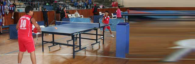 Masa Tensisi Turnuvası