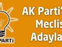 AK Parti Akçaabat Belediye Meclis Aday Listesi