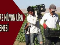 Çiftçiye 1 milyar 973 milyon lira karşılıksız destek ödemesi yapılacak