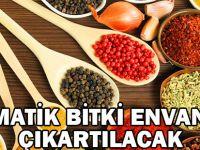 Aromatik Bitki Envanteri Çıkatılacak