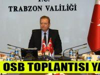 Valilikte Şinik OSB Toplantısı