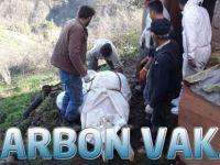 Trabzon'da 2. Şarbon Vakası