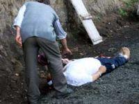 Ağaçtan düşerek Öldü