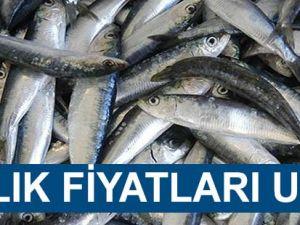 Akçaabat'ta Balık Fiyatları Uçtu