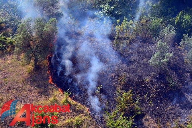 Akçaabat'ta Orman Yangını galerisi resim 1