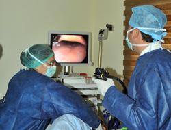 Endoskopi Bölümü Faaliyette