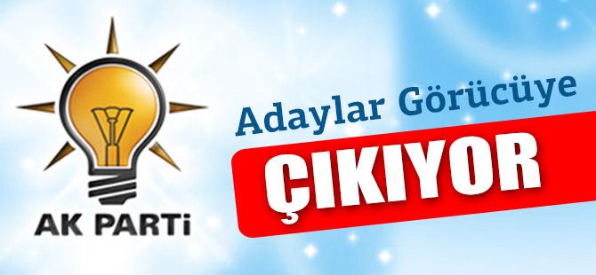 AK Parti Adayları Görücüye Çıkıyor.