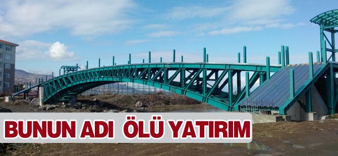 Bu Köprü Neye Hizmet Edecek?