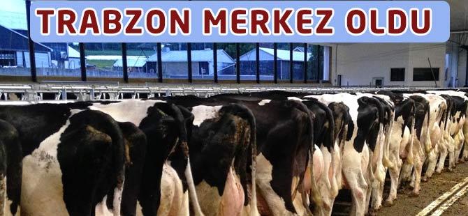 Trabzon da merkez oldu