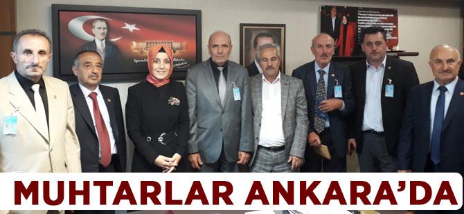 Muhtarlar Ankara'da