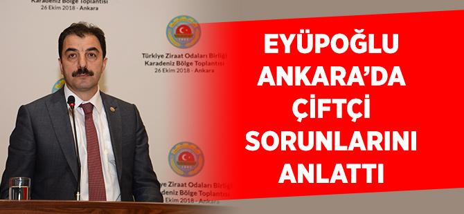 Başkan Eyüpoğlu Ankara da Çiftçi Sorunlarını Anlattı