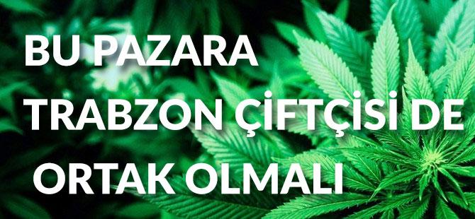 Bu Pazara Trabzon Çiftçisi de Ortak Olmalı