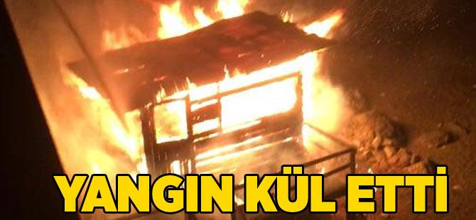 Yangın Küle Çevirdi