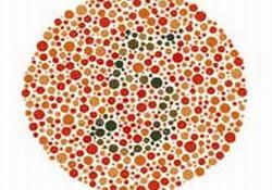 Renk Körlüğü test