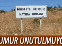 merhum Mustafa Cumur Adına Hatıra Ormanı