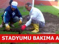 Fatih Stadyumu Bakıma Alındı