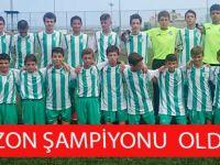 Trabzon Şampiyonu Söğütlü