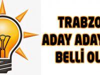 AK Parti'de aday adayları belli oldu
