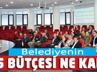 2015 Bütçesi ne Kadar?