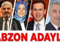 AK Parti Listesi