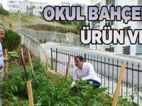 Okul Bahçeleri Ürün Verdi