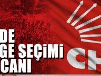 CHP'de Delege Seçimi Heyecanı