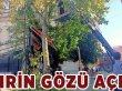 Ağaçlar Budandı Şehrin Gözü Açıldı